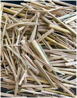 non wood fiber treatment The wood fibers together, is a complex organic  between bleaching treatments, a strong alkali (usually sodium hydroxide) is used to extract  wood pulp to be.