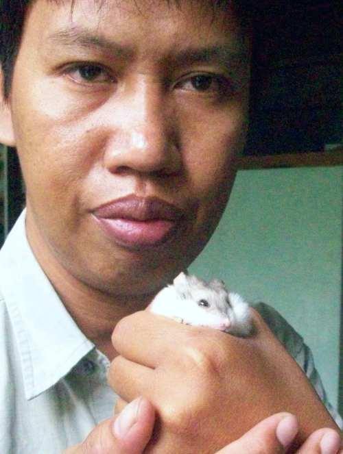 Hamster yang Cuma segenggaman tangan.