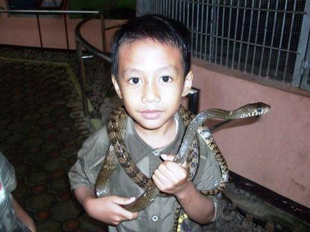 ibrahim dan ular