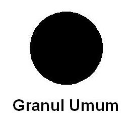 granul_umum