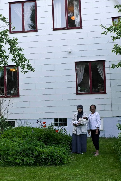 Rumah Khas Swedia milik Gosta dilihat dari belakang