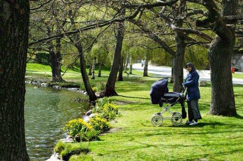 Jalan-jalan ke taman menikmati hangatnya musim semi