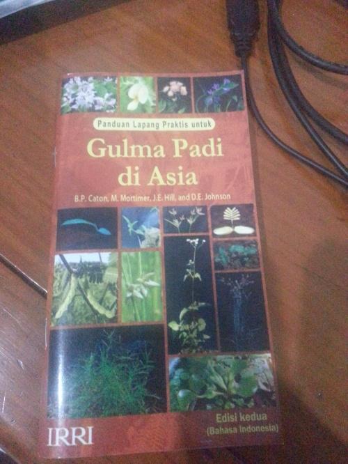 Gulma padi di asia. Buku gratis dari Puslitbangtan.
