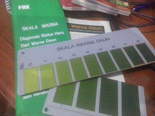 Bagan warna daun (BWD), bagan warna untuk meningkatkan efisiensi pemupukan N.