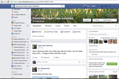 group pertanian cabe facebook