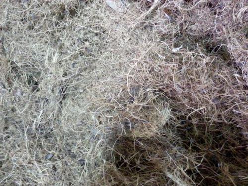 tankos sawit cacah