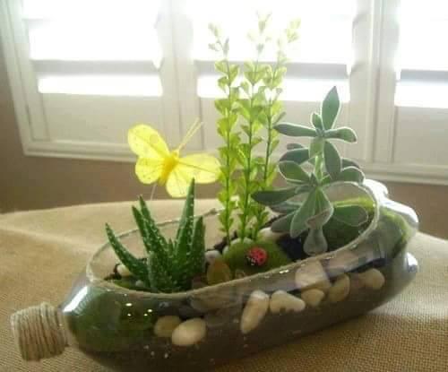 Kreasi pot tanaman dari botol plastik bekas.