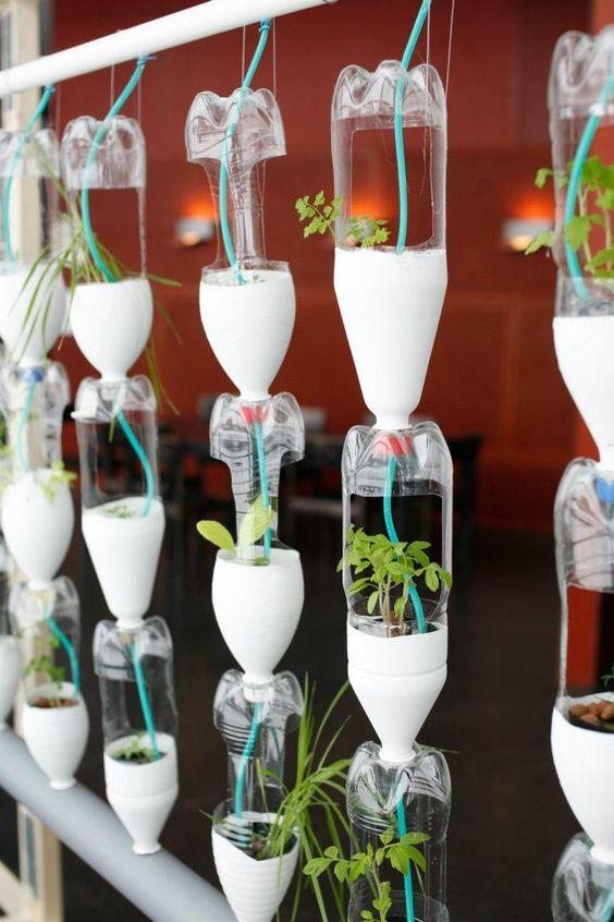 Memanfaatkan Sampah Botol Plastik Bekas Untuk Pot Tanaman