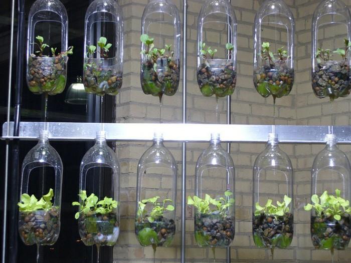 Memanfaatkan sampah botol plastik bekas untuk pot tanaman for Garden design using plastic bottles