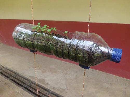 pot botol plastik bekas