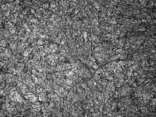 selulosa sawit dalam bioplastik