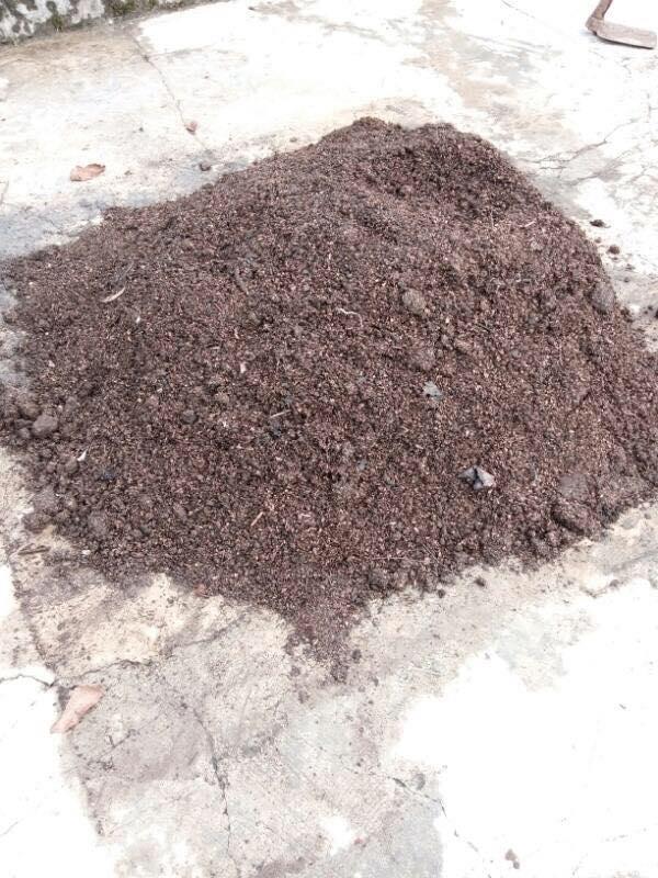kompos kulit singkong promi